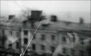 The violinist on a roof by frida-vl