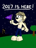 2017 is here! by Scanisma