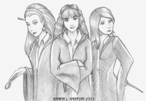 Harry's Angels by crzydemona