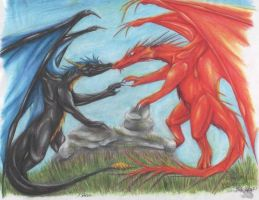 Dragon love by Riok
