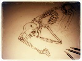 Skeleton project part 2 by blackheartedlove