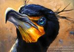 Double Crested Cormorant by Nambroth