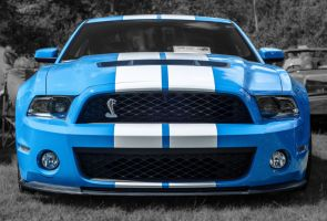 shelby GT 500 by carbonyx
