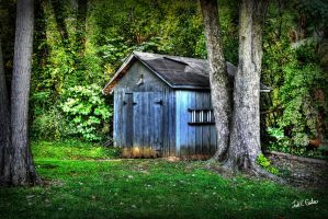 Backyard Shed by toddcarter