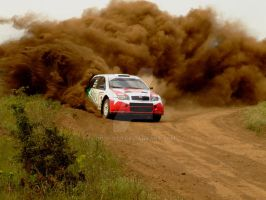 tamas turi - fabia wrc - dusty by donfoto