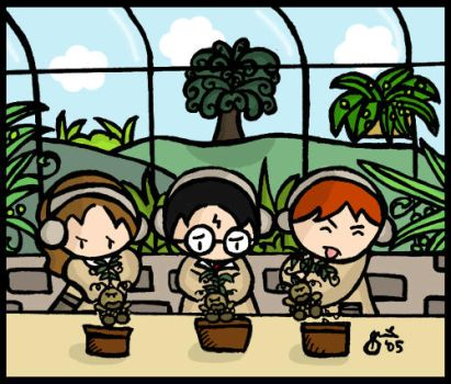 Mandrakes Lesson by cippow25