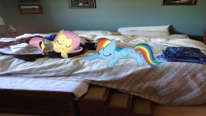 Fluttershy And Rainbow Dash Sleeping by Mr-Kennedy92