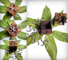 Cube Box with Triskelion Lock by pranayadesign