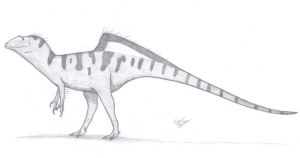 Concavenator corcovatus by King-Edmarka