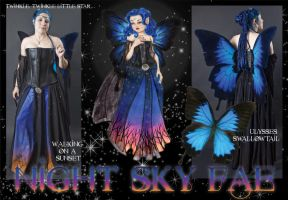 Night Sky Fae by BelovedUnderwing