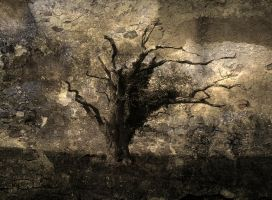 Background stock Fantasy Natur by 1989juni
