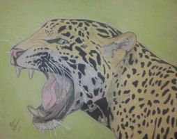 Jaguar by selector67