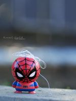 Spidey Fail by KimberleePhotography