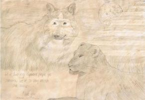 Panther and wolf by wild-horse