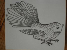 Fantail 1 by PhilippaAnne