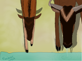 Wildebeest by MarianneLoveDrawing