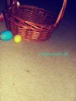 Project 365, Day 199: After Easter by sandyandi146