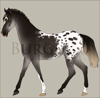 Special Burgunu import for goats by PaleMount