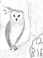 Jareth _-the owl-_ by Figarro-Luv