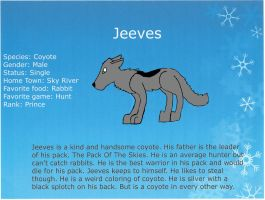 Jeezes Bio by HaelOnFire