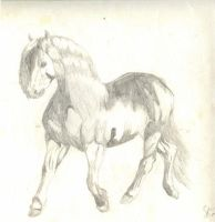 Horse I Drew When I Was 11 by kijonaia