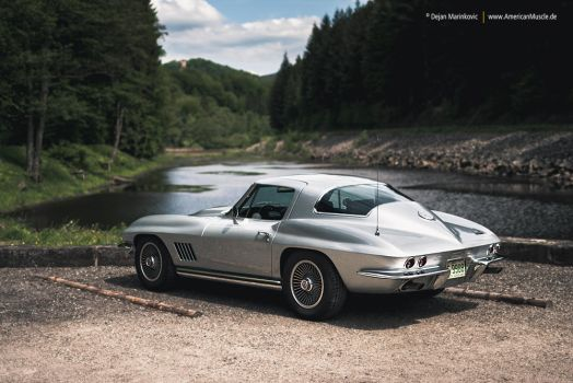 Silver Sting Ray by AmericanMuscle