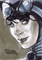 Catwoman Sketchcard by dtor91