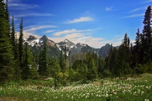 Panorama Point by CassieMerrymanPhoto