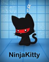 Ninja Kitty Poster 2013 by TentacleKitty