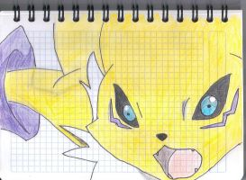 Angry Renamon by Digi-Lover517