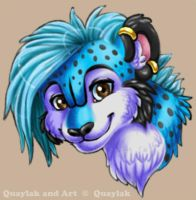 Quaylak Headshot - Cintiq Test by Quaylak