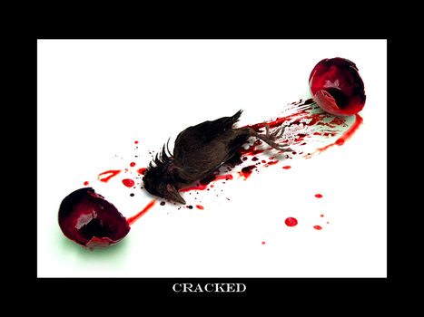 Cracked by Trish-the-Stalker