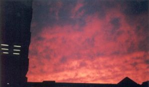 Blood Red Sky by severedflesh