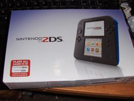 Nintendo 2DS by Dragonrage19