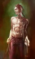 Daken by Summerset