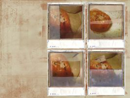 Tomato Polaroids by Dody49