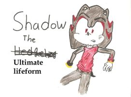 Shadow the Ultimate life form by AiXCute