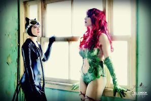 The Gotham city Sirens by VallLondon