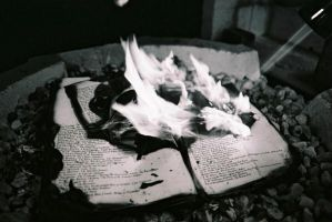 Burning Books Five by lovephotography