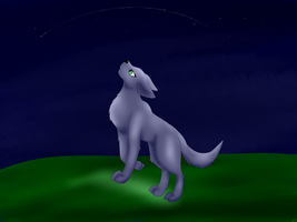 wolf purple in the night by torikaze