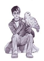 Harry ed Hedwige by Elezar81