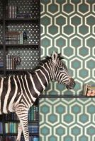 taxidermy, mounted zebra in your interior by Museumwinkel