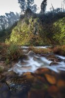 Howqua Valley Stream by alexwise