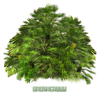 ExoticPlant by BrotherGuy by BrotherGuy