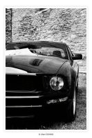 Ford Mustang 2005 II by Alan-Eichfeld