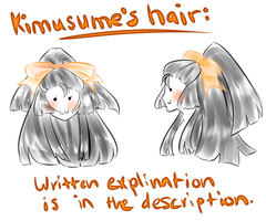 Kimu Hair ''Reference''+Explanation by shinamiEBA