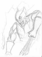 Wolverine Sketch by kylemulsow
