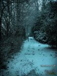 The snowy path by meanart
