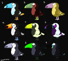 Toucan Adopts by Kenny-BS