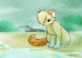 TsC - Burningkit's sorrow by FlareAKACuteFlareon